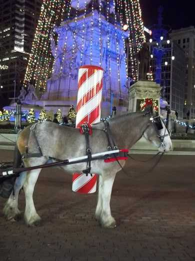 Carriage rides in Indianapolis