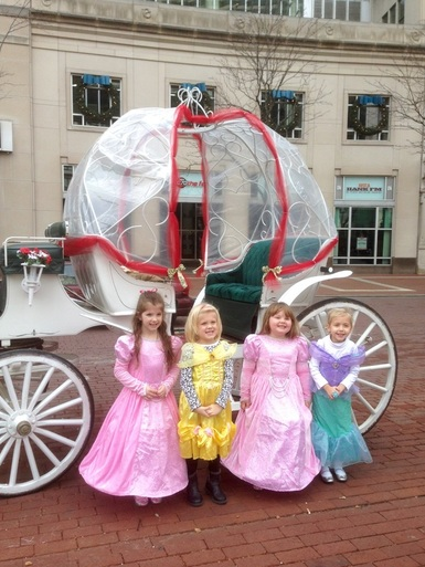 Horse Carriage ride for kids