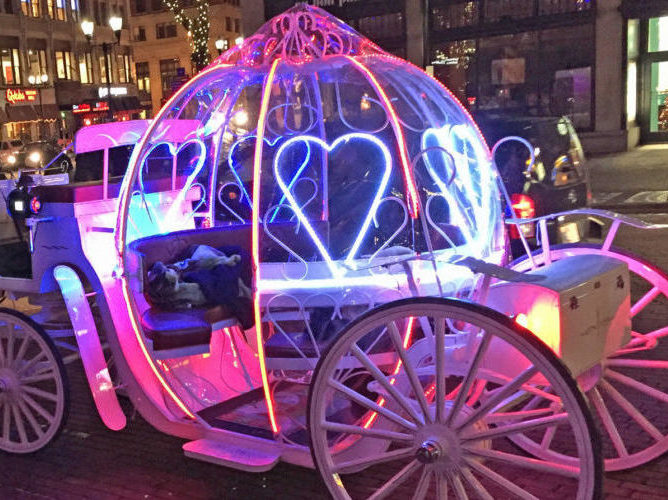 Horse Carriage Ride in Indianapolis, IN